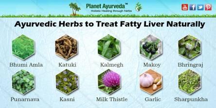 herbs for fatty acid