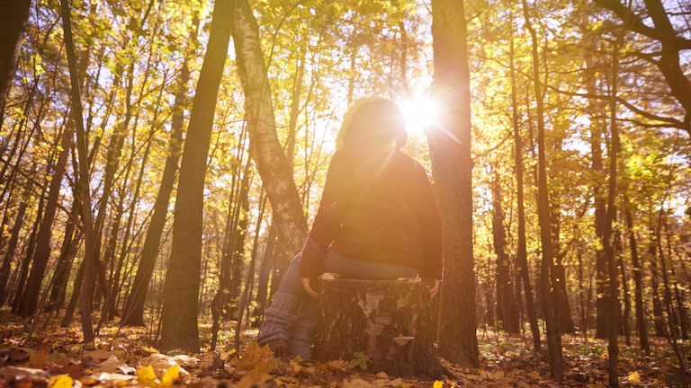 8 ways a walk in the woods could change your life