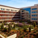 2019 slated as big year for telemedicine at Stanford Children's Health