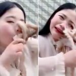 Chinese vlogger's attempt to eat live octopus immediately backfires
