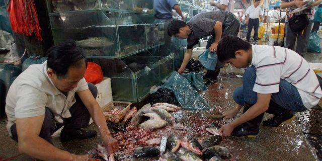 Seafood vendors prepare fresh fish at a wet market in Beijing, July 3, 2007. (Getty Images)